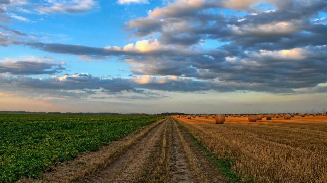 Június végétől igényelhető a mezőgazdasági többlettámogatás