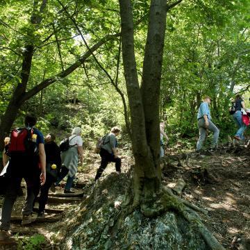 Várják a látogatókat a hazai nemzeti parkok