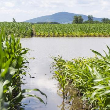 Félmilliárd forintot meghaladó kár az hétvégi esőzések miatt
