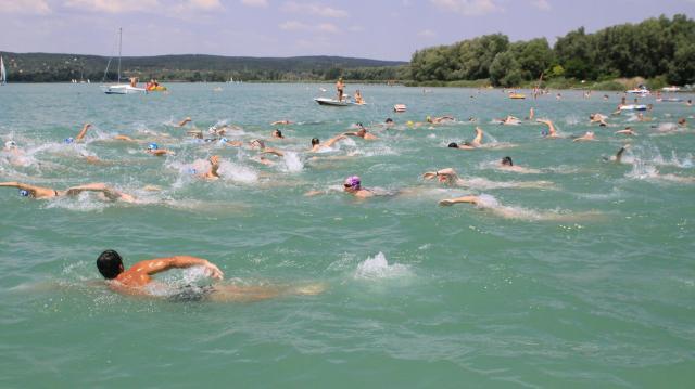 Augusztus 1-jén rendezik meg a 38. Balaton-átúszást