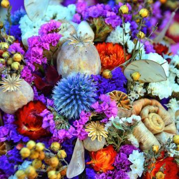 Bőköz Fesztivál szeptemberben az Ormánságban