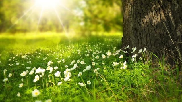 Sok napsütés lesz, de kánikulára nem kell számítani