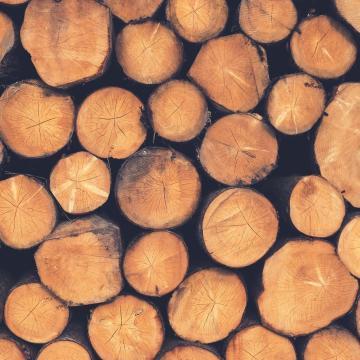 Tűzifa pályázat indul