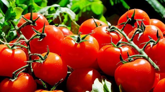 Zöldség-gyümölcs ellenőrzés a budapesti piacokon