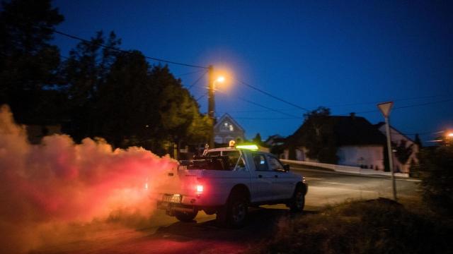 650 településen folytatódik a szúnyogirtás