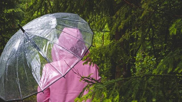 Ma még marad a borús, esős idő