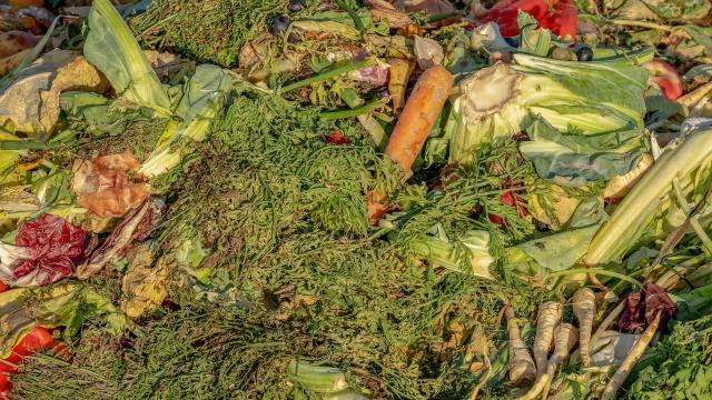 Megdöbbentő mennyiségű élelmiszert kerül a szemetesbe évente!