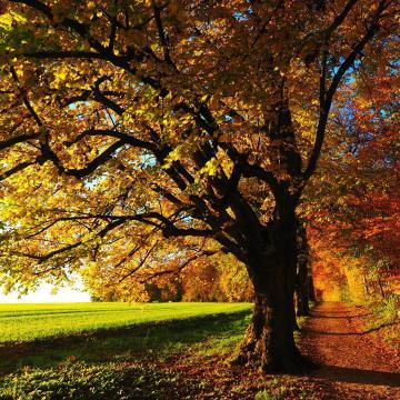 Nyárias idő lesz az ősz első hétvégéjén