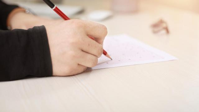 Pályaorientációs vizsga vár a nyolcadikosokra