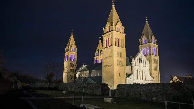 Felföldi László az új pécsi megyés püspök