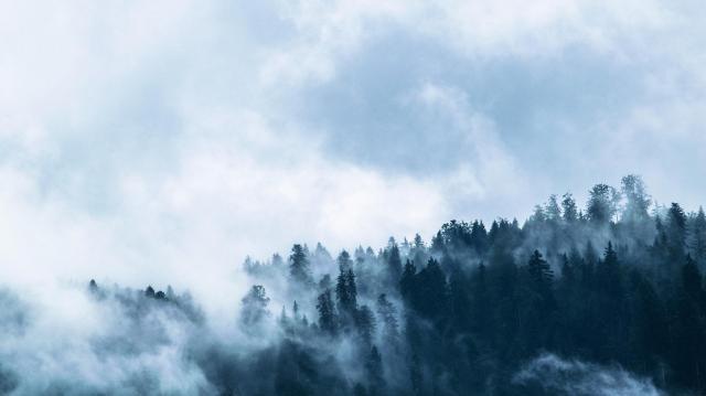 Ködbe borul a hét