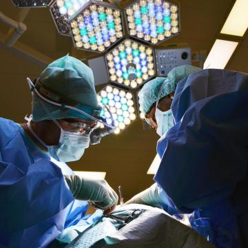 Nemzetközi elismerés a négy magyar orvosképző egyetemnek