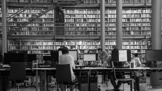 A magyar felsőoktatás bizonyította alkalmazkodóképességét