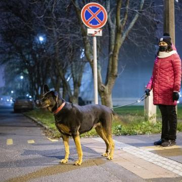 Koronavírus - Meghalt 115 beteg, 6360-nal nőtt a fertőzöttek száma Magyarországon