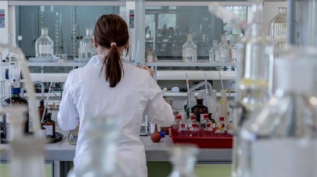 Magyar kutatók írását az év 10 legérdekesebb cikke közé választotta a Science