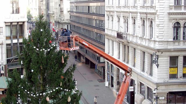 Sosem lát karácsonyfát 64 ezer fényfüzér
