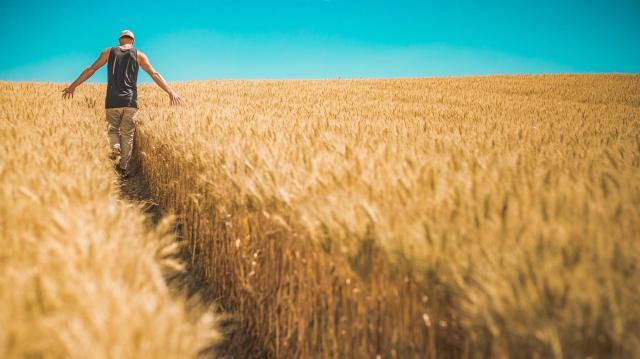 Száz termelőt mutat be a Magyar Konyha melléklete