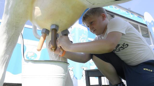 Tej Terméktanács: vitathatatlan a tejtermékek szerepe az egészséges táplálkozásban
