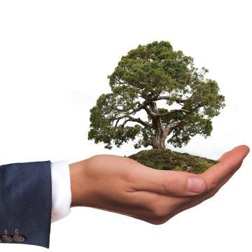 Több pénzre pályázhatnak a környezetbarát beruházások
