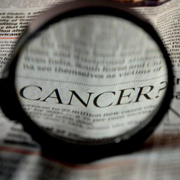 Időskori rák és memóriazavar előrejelzésére alkalmas gént vizsgáltak az ELTE kutatói