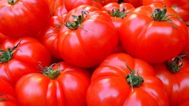 Komoly fejlesztés előtt áll a magyar élelmiszeripar