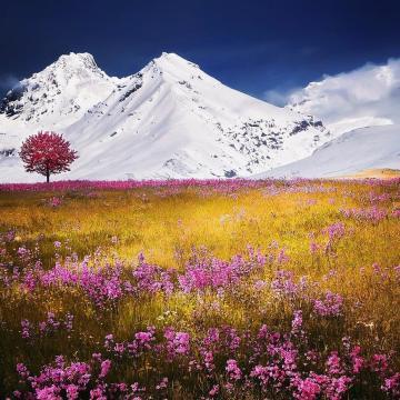 Sok magasabban fekvő területen lett havas a táj