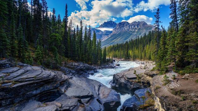 Az elmúlt tíz évben 21 százalékkal nőtt a nemzeti parkok látogatottsága