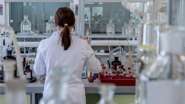 Összesített elsők lettek a magyar diákok az Európai Kísérleti Tudományos Olimpián