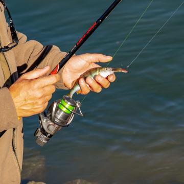 Jól teljesít a horgászpiac, még a járvány sem fogott rajta