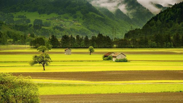 AM-helyettes államtitkár: megállt a tanyán élők számának csökkenése